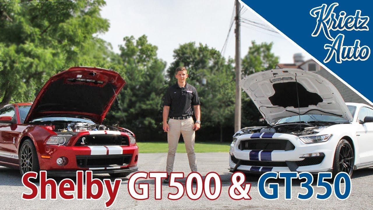 Krietz Auto Sales >> Shelby Gt500 Gt350 At Krietz Auto Sales Krietz Auto Youtube