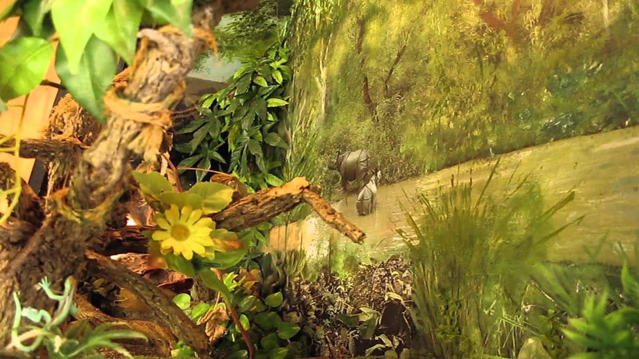 Ultimate Vivarium Youtube
