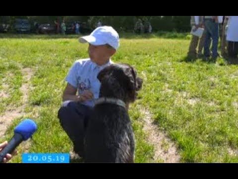 ТРК ВіККА: У Черкасах визначили найвправніших собак-мисливців