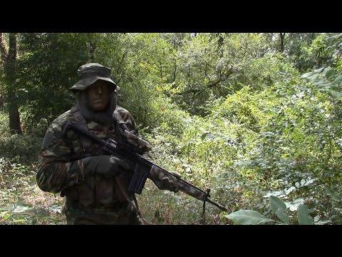 Greek Lizard Camouflage Effectiveness - YouTube