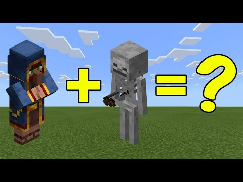 I Combined a Skeleton and a Wandering Trader in Minecraft - Here's What Happened...