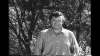 The Pawnbroker (1964) Trailer