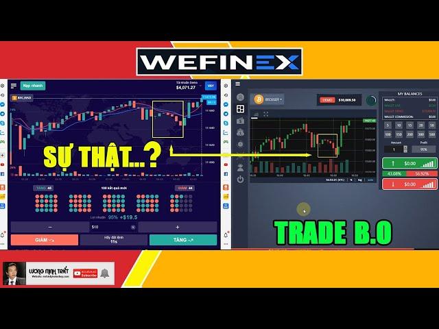 Wefinex - Có Nên Đầu Tư Tiếp Tục Hay Dừng Lại ? 🔴 Lương Minh Triết