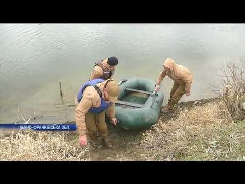 Подробности: Браконьєри масово винищують рибу на Дністрі
