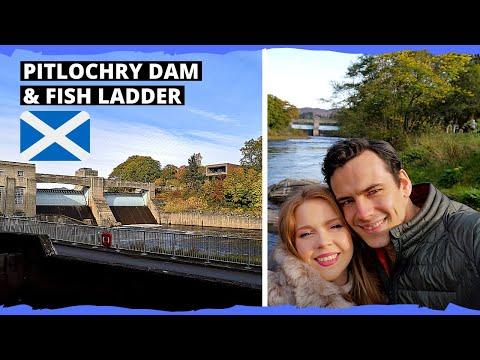 Pitlochry Dam & Fish Ladder