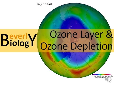 Ozone Layer & Ozone Layer Depletion