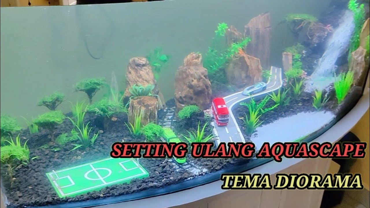 Setting Ulang Aquascape Diorama Youtube