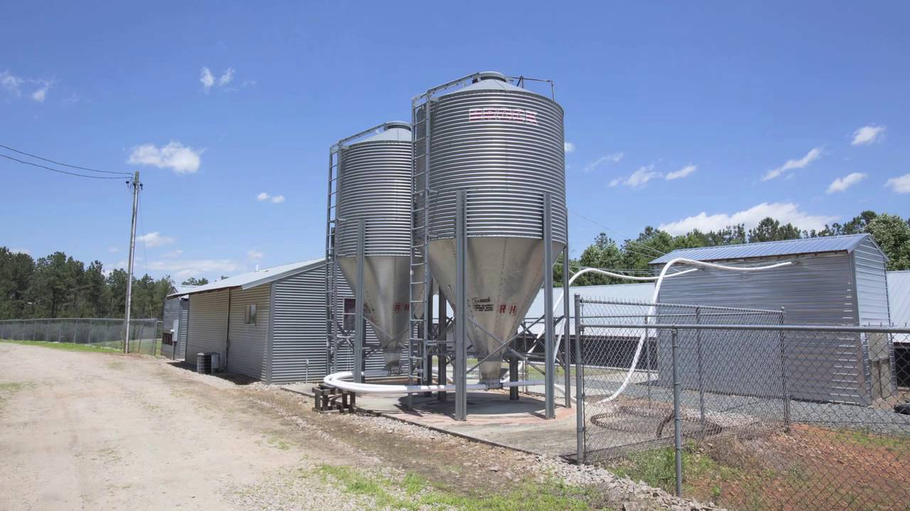 Poultry Farm Egg Production Business For Sale Hatchery and Land in Warren  County NC