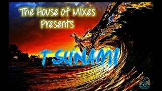 TSUNAMI - DVBBS  Borgeous (DOWNLOAD) Electro House Music / Tomorrowland