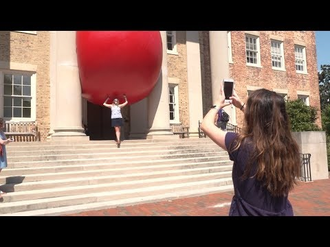 RedBall Project Rolls Into Chapel Hill