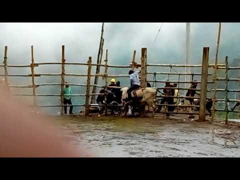 Yagila 2018 jaripeo ranchero thumbnail