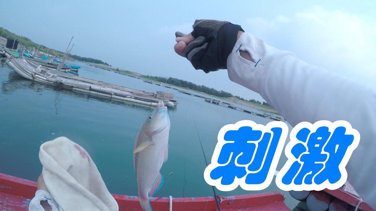 釣魚趣 用手竿釣到這種貨色很帶勁
