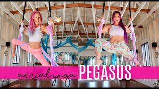Pegasus   Aerial Yoga Flips and Tricks