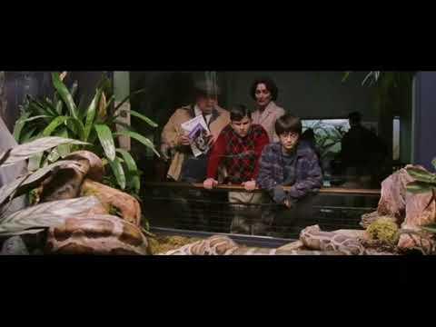 Гарри Поттер разговаривает со змеёй. Гарри Поттер и философский камень.