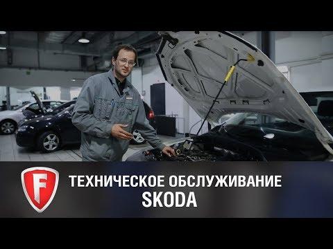 Плановое ТО Skoda Octavia - техническое обслуживание автомобиля Шкода Октавия у официального дилера