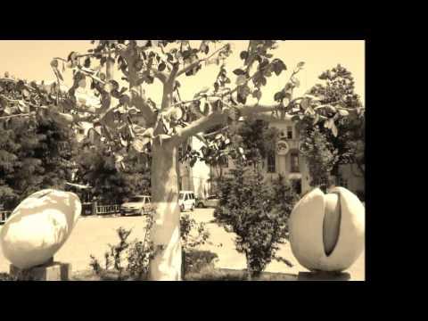 Cengiz Tan (Siirt Düğün Geceleri 2 ) - Abartu Elveleye
