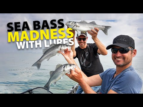SPRO - Sea Bass Madness With Lures