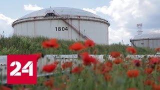 Энергетика. Нефтегазовое партнерство: Россия - Сербия. Специальный репортаж Полины Крикун - Россия…
