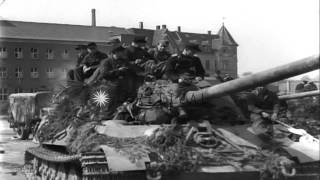 German soldiers of 512th Heavy Tank Destroyer Battalion surrender, piling up arms...HD Stock Footage