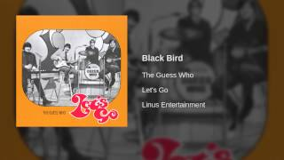Play Black Bird