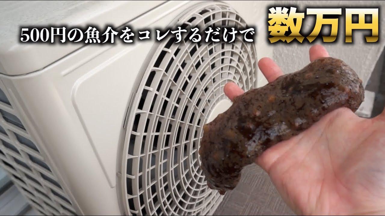 【転売して稼げ】この500円の魚介をアレするだけで数万円の高級品に仕上がります