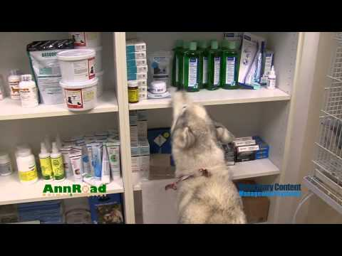 Miracle at Ann Road Animal Hospital