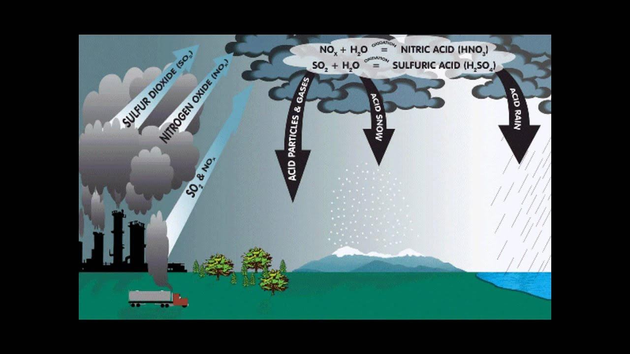 the sulfur cycle [ 1280 x 720 Pixel ]