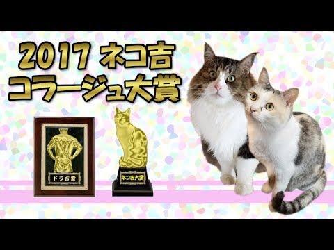 おもしろ猫画像の祭典!2017ネコ吉コラージュ大賞 2017 Neko Cat Collage Grand Prize