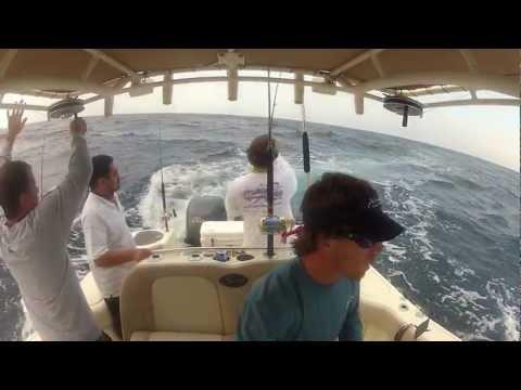 Offshore Office - Cinco de Mayo Mahi Fishing in 4-6ft Seas - May 5, 2012