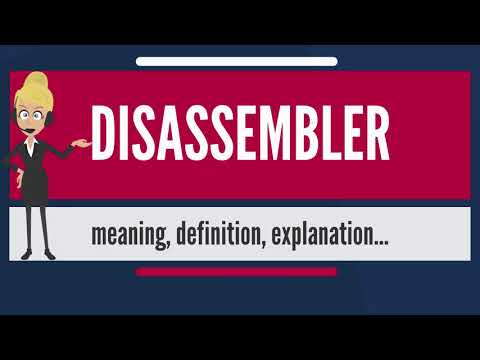What is DISASSEMBLER? What does DISASSEMBLER mean? DISASSEMBLER meaning, definition & explanation