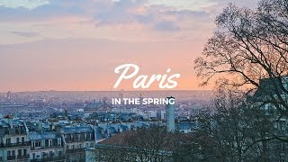 Paris in the Spring | World of Wanderlust