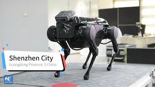 Meet Jamoca, the robot dog