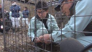 イノシシの被害を食い止めようと、県西地域鳥獣被害対策研修会が2月28...