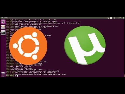 Installing Utorrent On Linux/Ubuntu