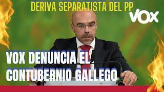🟢VOX contra el CONTUBERNIO en GALICIA y el COMPADREO del PP andaluz con UGT