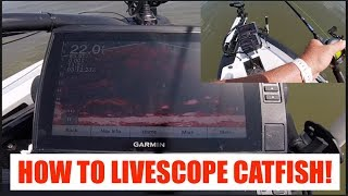 #HowToCatch #Catfish using #GarminLivescope!