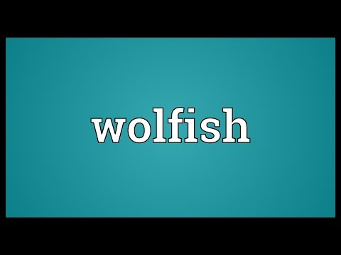 Wolfish Meaning