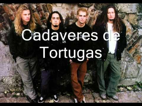 Cadaveres de Tortugas-Street Hunter