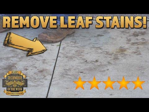 hqdefault - Remove Concrete Leaf Stains! - Concrete Floor Pros