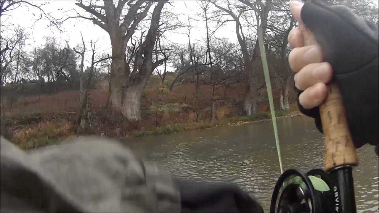Nick fly fishing guadalupe river texas winter fishing for Guadalupe river fly fishing