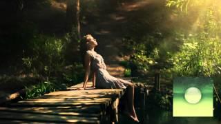 Solee - Bonkers (Original Mix)