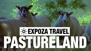 Pastureland Vacation Travel Video Guide