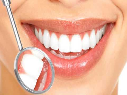 Best Dentist in Boca Raton Florida   Barbag Dental   www barbagdental com