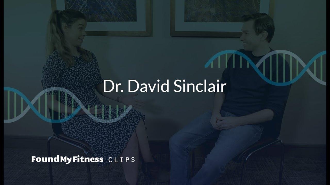 5. Why we lose NAD+ in aging [DNA repair & inflammation]   David Sinclair