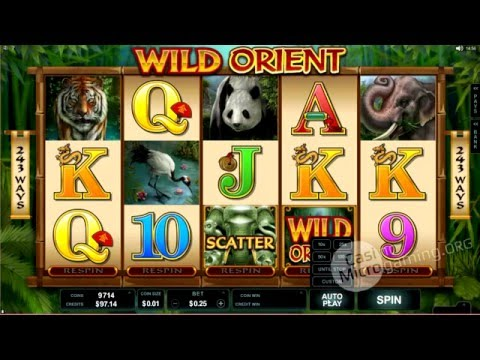 Wild Orient Slot Machine (Real Money Review)