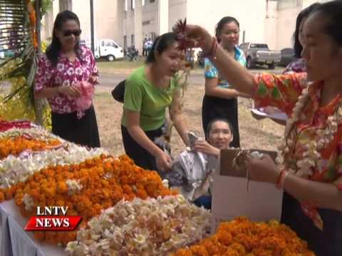 Lao NEWS on LNTV: The national flower of Laos Dok Champa is blooming/16/4/2016