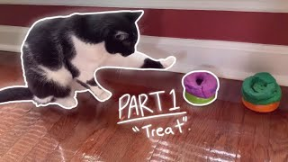 How To Teach A Cat To Speak With Buttons | #1