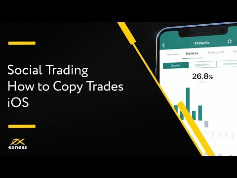 discover-how-to-copy-strategies-on-the-exness-social-trading-app