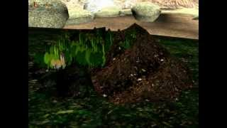 Science - Soil Formation and soil layers - Hindi