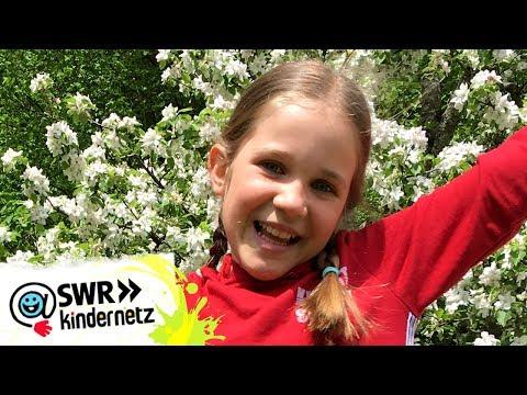 """Neu bei """"Tiere bis unters Dach"""": Paulina Schnurrer   Tiere bis unters Dach   SWR Kindernetz"""